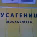 Мусагеница